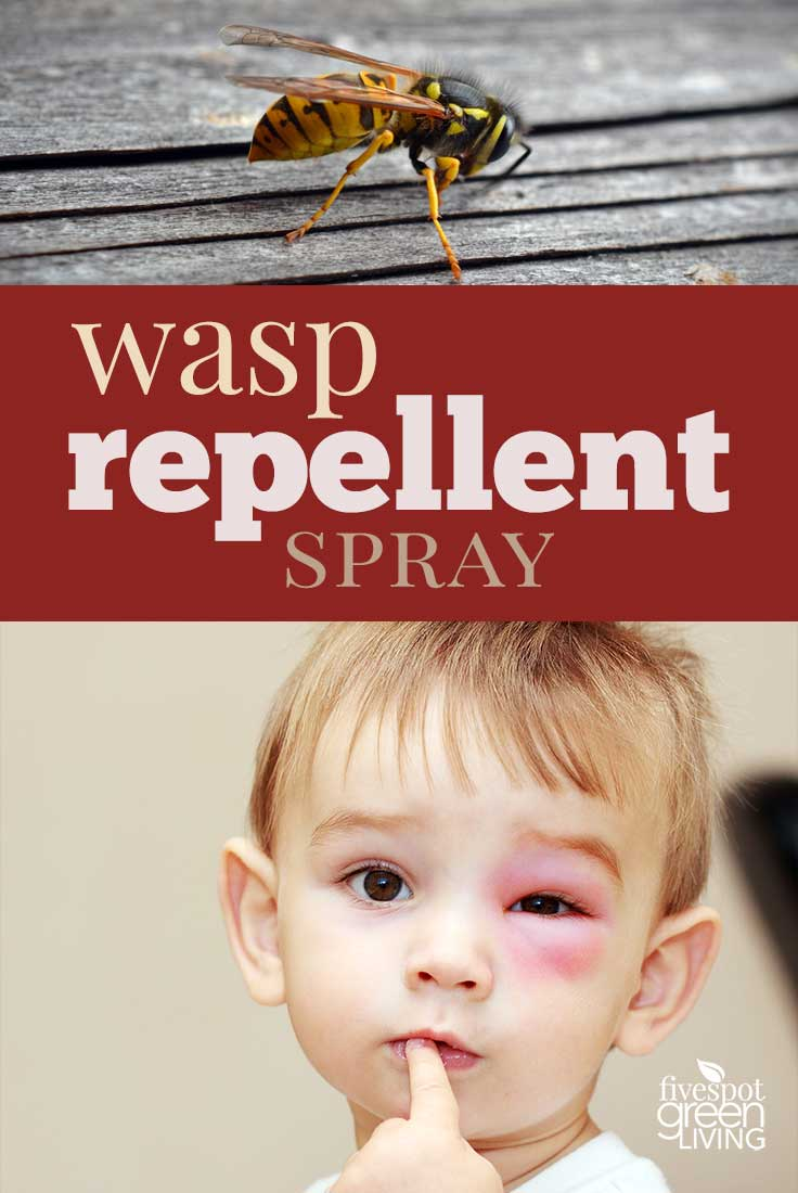 Summer hacks - DIY wasp repellant spray