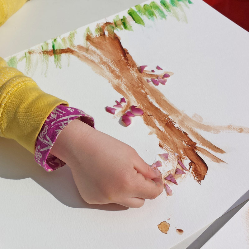 Petal pictures are a lovely way to explore blossom and spring flowers with children #plants #flowers #STEAM #science #nature #naturelover #plantscience #painting