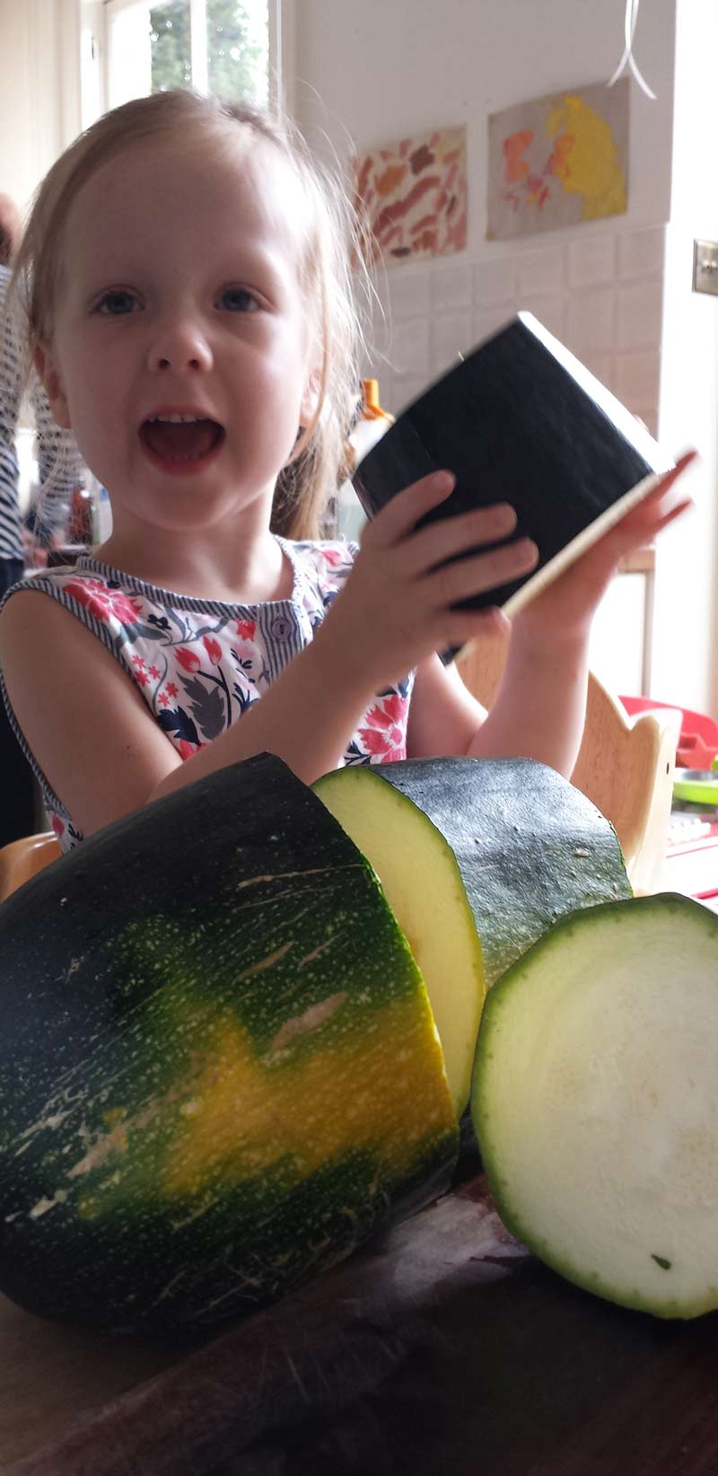 Growing courgettes with kids - courgettes are great fun to grow with kids as they are super easy, make scrumptious chocolate cake and are a wonderful opportunity to learn about plant science and pollination #courgette #zucchini #growingvegetables #gardeningwithkids #gardenwithkids #plantscience #pollination