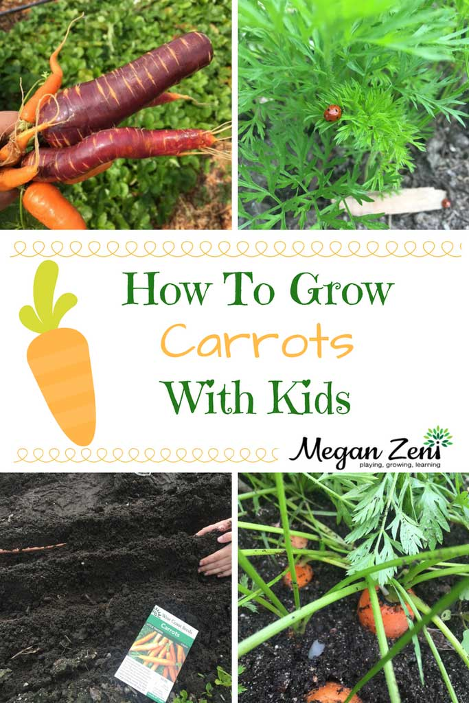 Growing vegetables with kids is great fun and a wonderful way to learn hands on about plant science and seeds #kidsgardening #vegetables #gardeningwithkids #plantscience #seeds #fertilisation