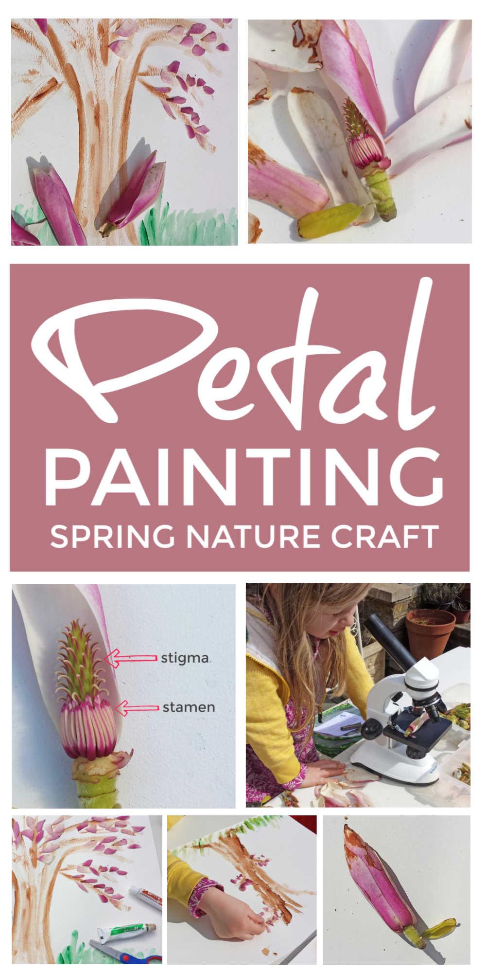 Petal Painting Spring Nature Craft