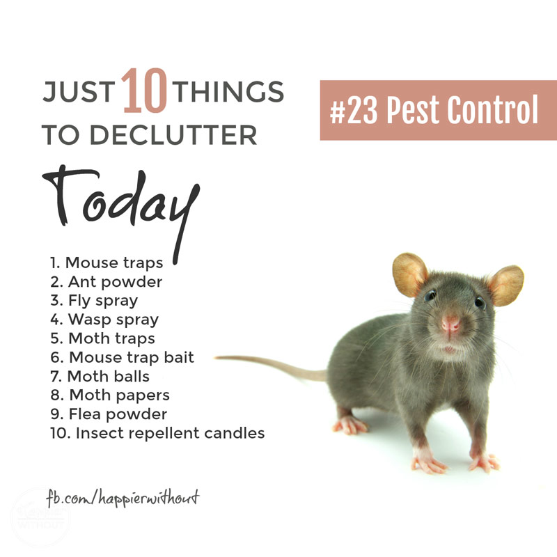 We all have cupboards full of remedies for household pests. Many of them don't work BUT most of them are toxic to kids, pets and good wildlife. Declutter them today ... #declutter #organize #simplify #greenliving #naturalcleaning