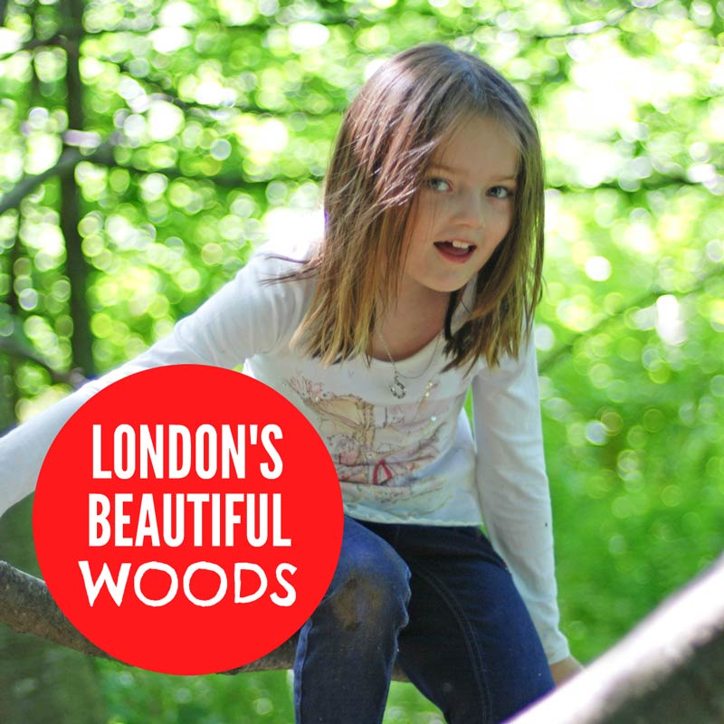 London woods