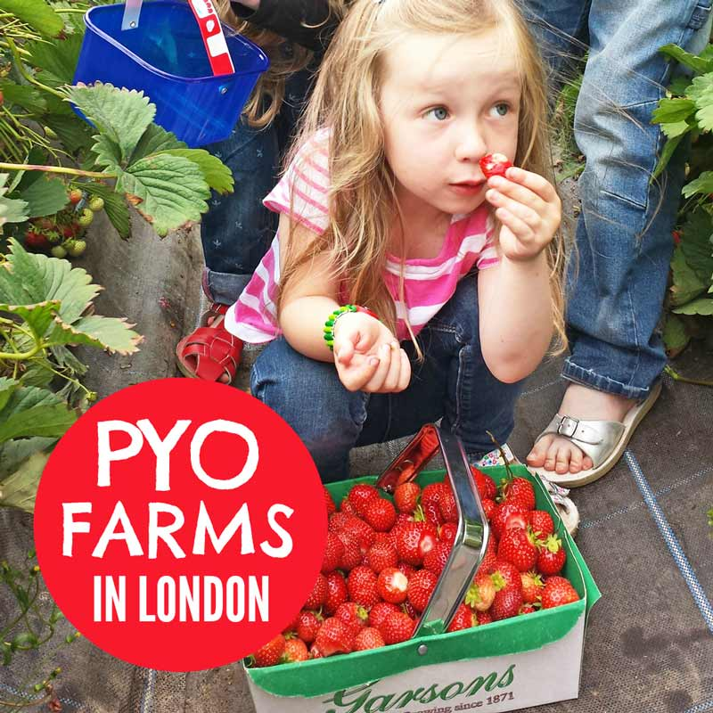 PYO farms in London