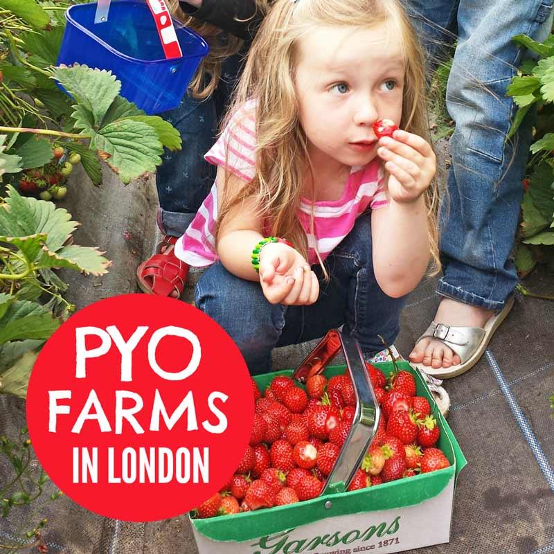 PYO farms in London