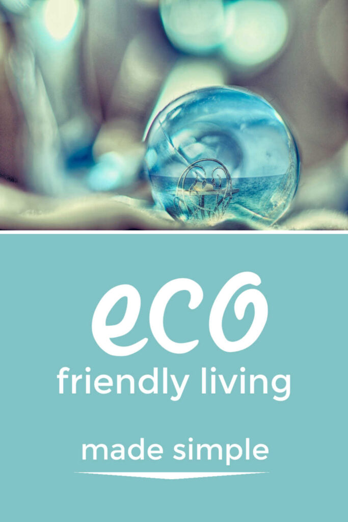 Eco Friendly Living Tips