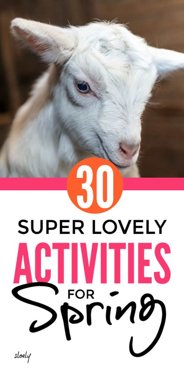 Kids Spring Activities Bucket List