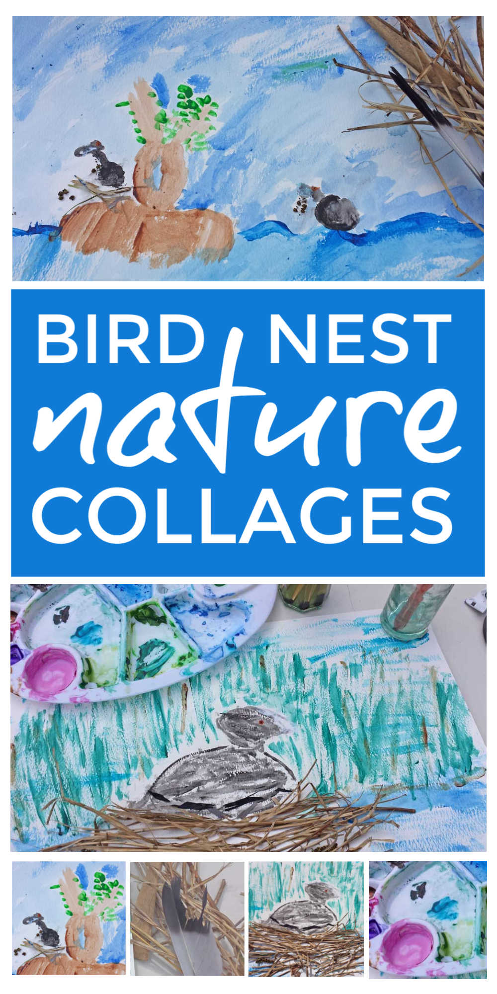 Birds Nest Nature Collages