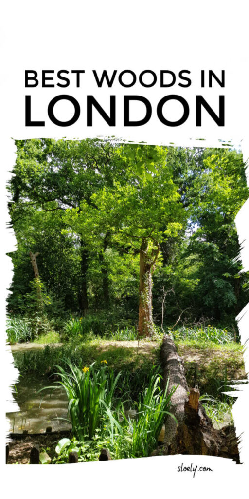 Best Woods In London