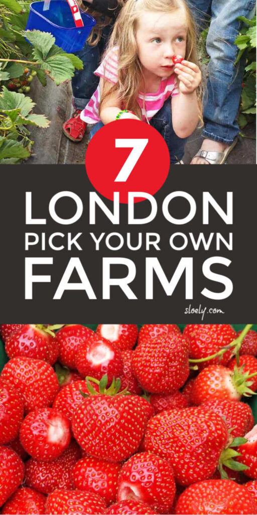 London Pick Your Own Farms