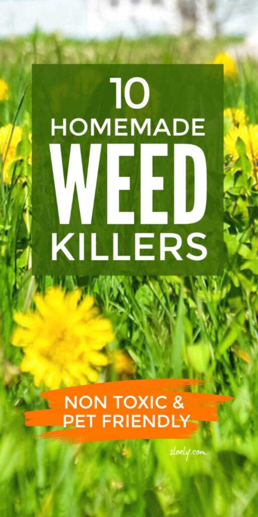 Non Toxic DIY Homemade Weed Killers