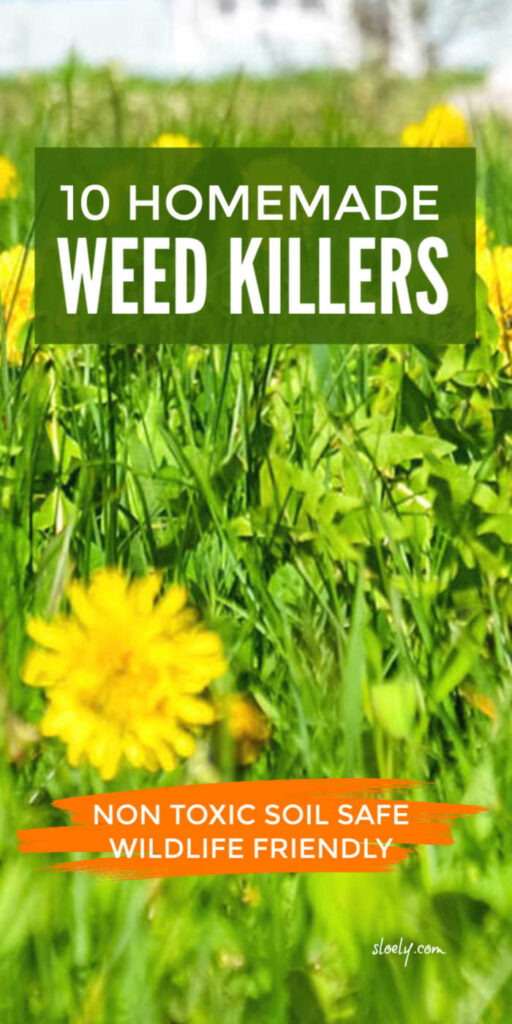 Non Toxic Homemade Weed Killers