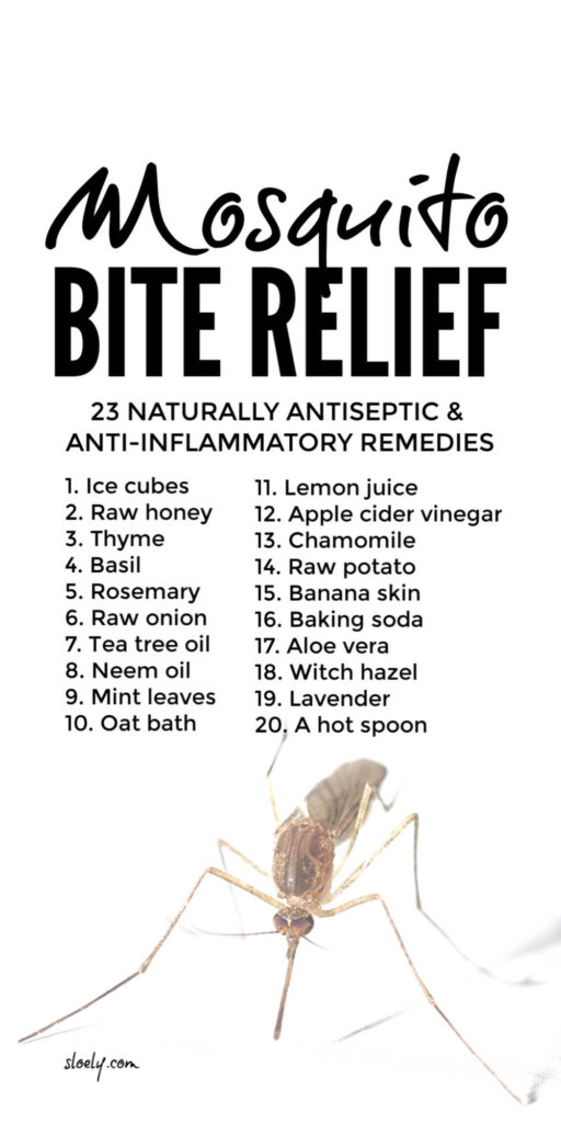 Natural Mosquito Bite Relief & Remedies