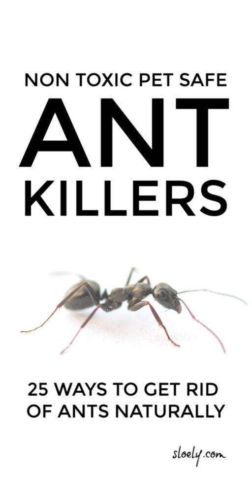 Natural Ant Killers