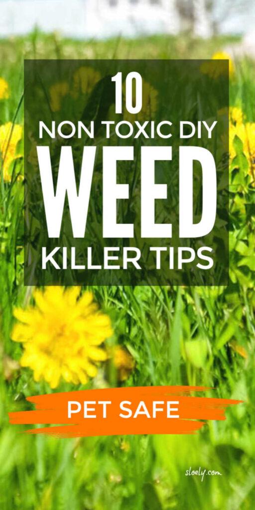 DIY Non Toxic Weedkillers