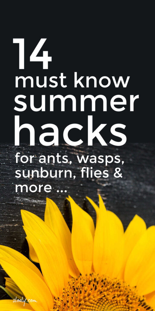 Non Toxic Hacks To Get Rid Of Wasps, Flies, Sunburn, Ants