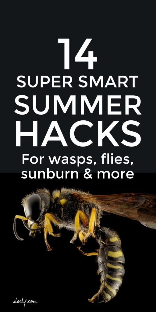 Non Toxic Hacks To Get Rid Of Wasps, Flies, Sunburn, Ants