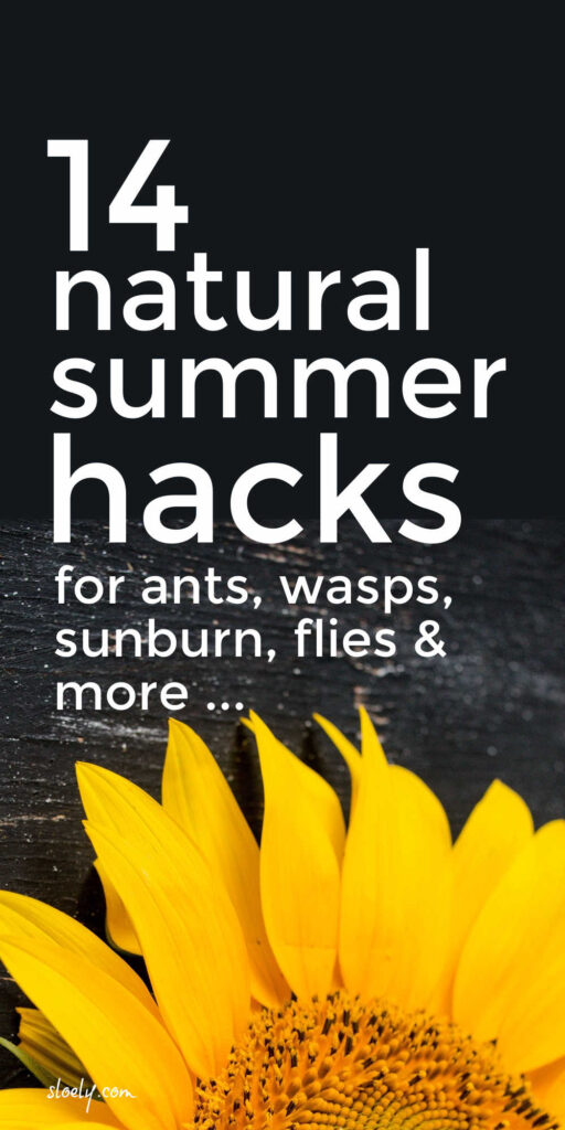 Natural Ways To Get Rid Of Wasps, Flies, Sunburn & More