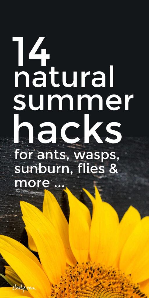 Natural Ways To Get Rid Of Wasps, Flies, Sunburn & More