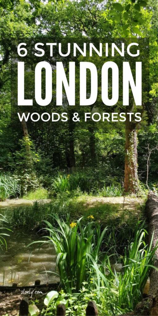 London's Best Woods