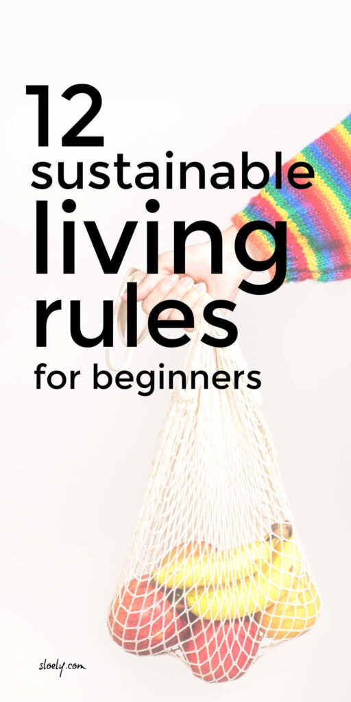 Sustainable Shopping Guide For Beginners