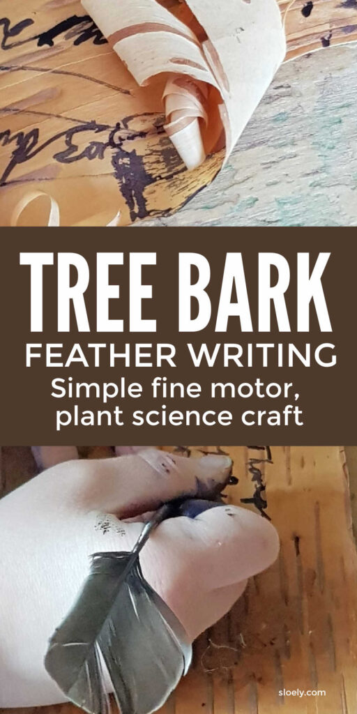 Feather writing on tree bark, fine motor plant science craft