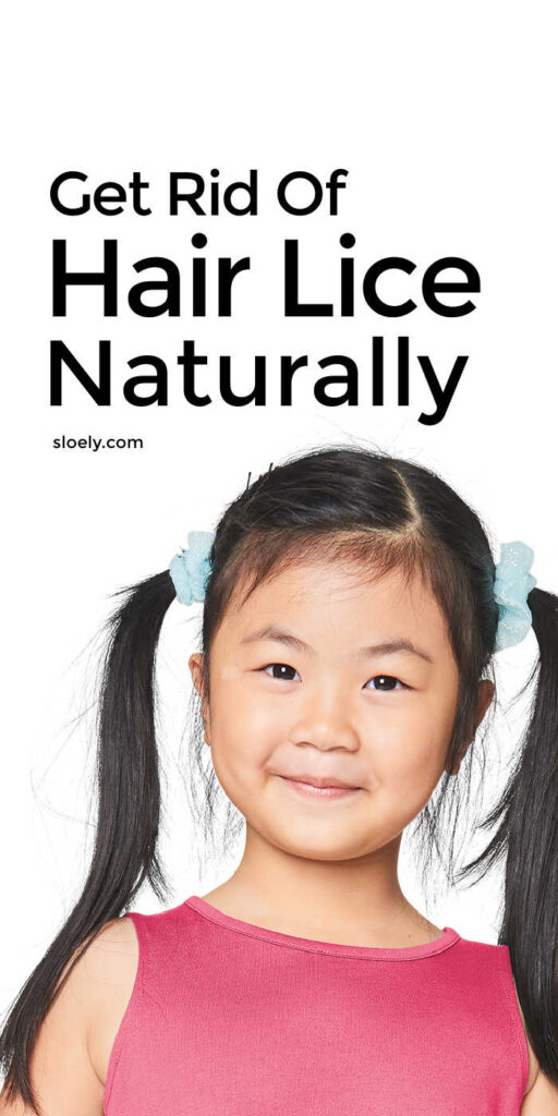 Natural Lice Remedies and Prevention