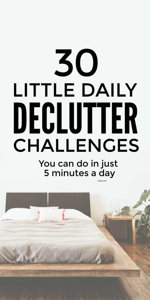 Daily Declutter Challenges