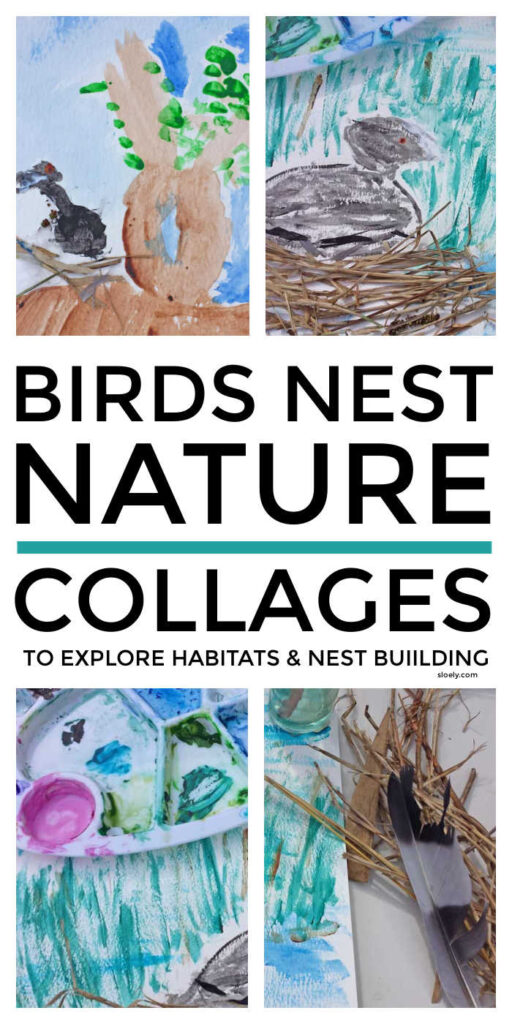 Birds Nest Nature Collages For Kids