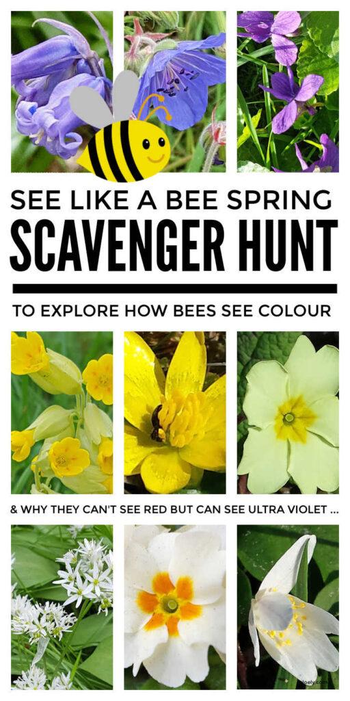 Spring Flower Scavenger Hunt For Kids