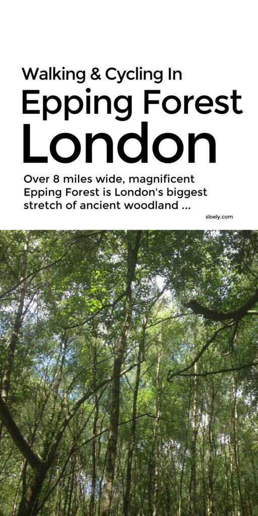 Walking & Cycling In Epping Forest London