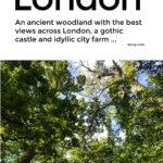 Oxleas Wood London Walks