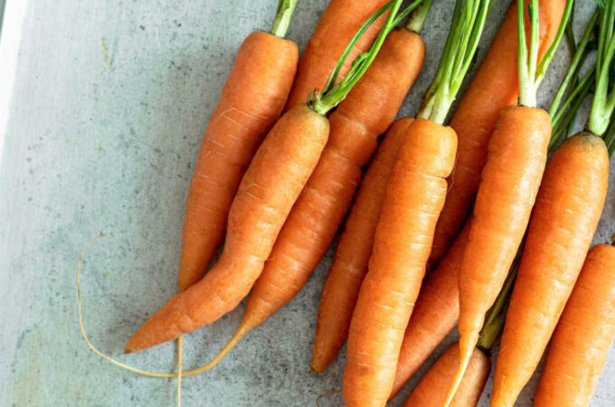 How To Grow Carrots Quickly Organically
