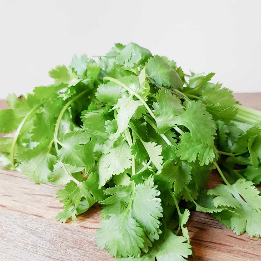 How To Grow Parsley Quickly From Cuttings And Seeds