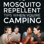 Mosquito Repellent Tips When You're Camping