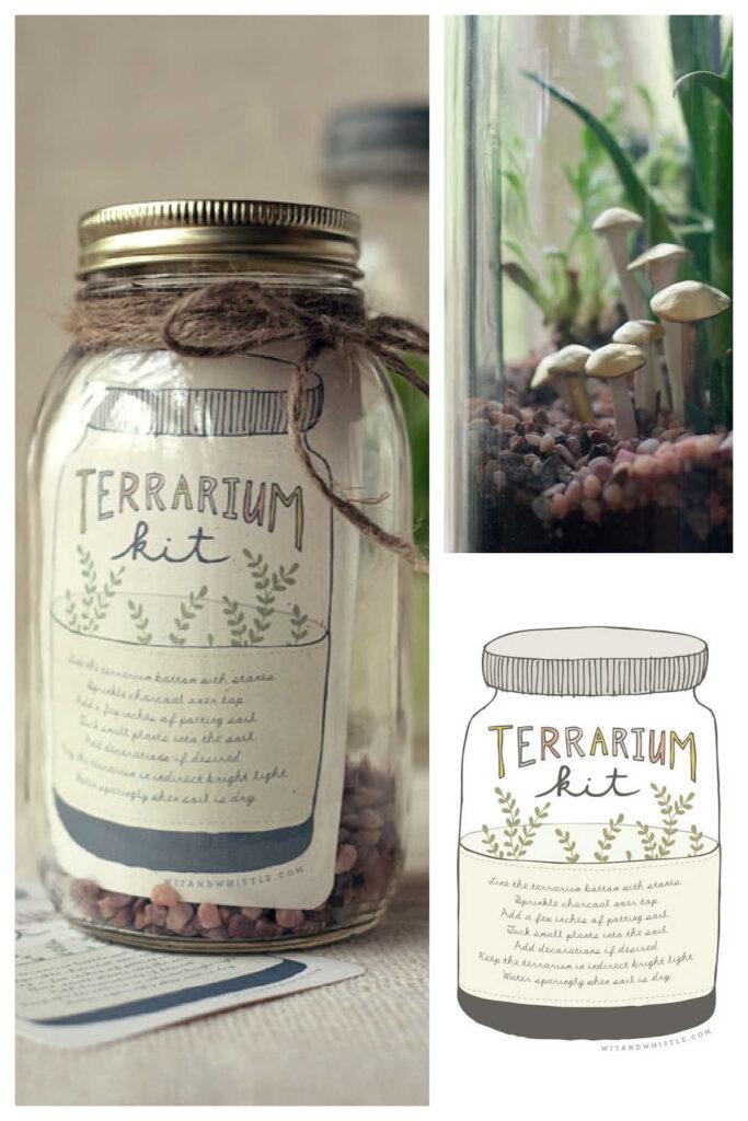 Inexpensive DIY Garden Gifts - DIY Terrarium