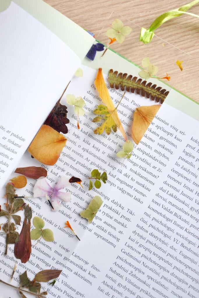 Pressed Flower Bookmarks As A DIY Garden Gift